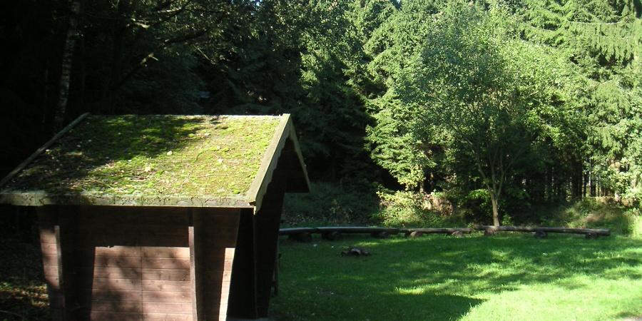 Ein Rastplatz im Wald.