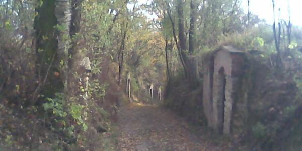 Kellergasse Schleinbach