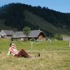 Die Postalm bietet mit ihren zahlreichen Hütten und dem Almblumenweg Erholung pur.