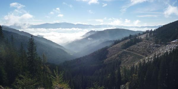 Nebel über den Kraubathgraben