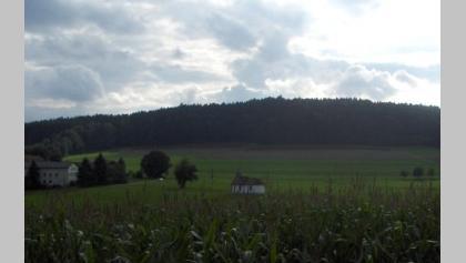 Wir lassen den Blick über die Landschaft schweifen.