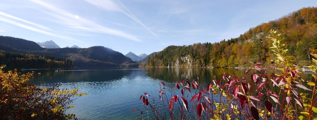 View from the east shore over the Alpsee