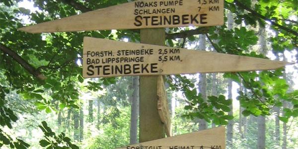 Römerbrunnen (Steinbeke) Lippspringer Wald
