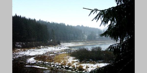 Hier fließt der Schwarzenbach in den Stausee.