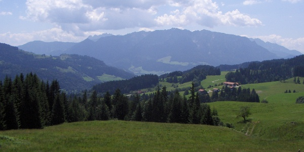 Von der Steinmoos-Alm haben wir einen schönen Panoramablick.