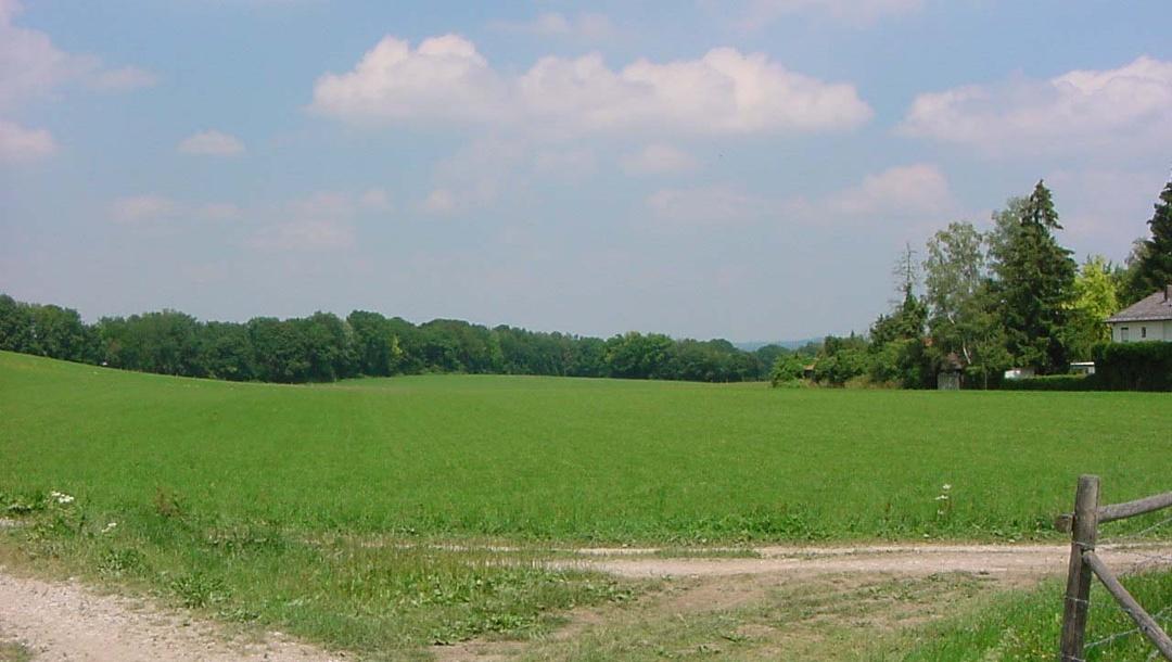 Typisches Landschaftsbild um den Ammersee.