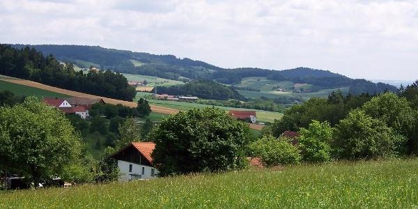 Blick vom Schellenberg
