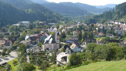 Blick über Schenkenzell mit Kloster.