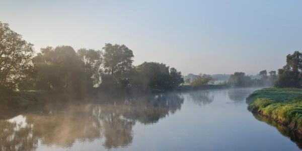 Der Elberadweg in Dessau am frühen Morgen