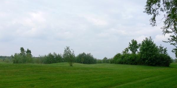 Gepflegtes Grün auf der Golfanlage Landhaus Dreihof.