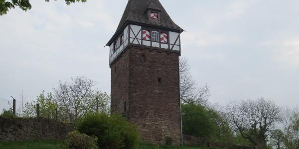 Der Försterbergturm in Stadtoldendorf