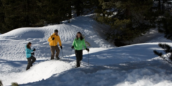 Durch die winterliche Landschaft geht es Richtung Findeln