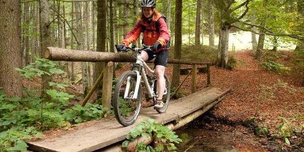 Trail / Brücke unterhalb der Juget Alpe