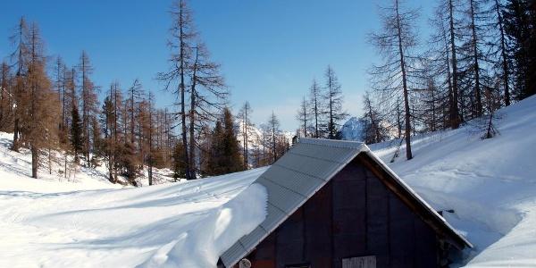 Albl Jagdhütte ~1700m