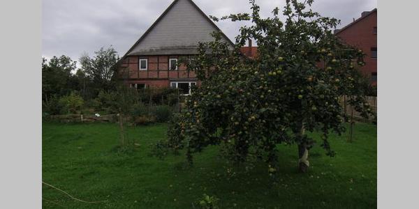 ländliche Idylle in Kleinhegesdorf