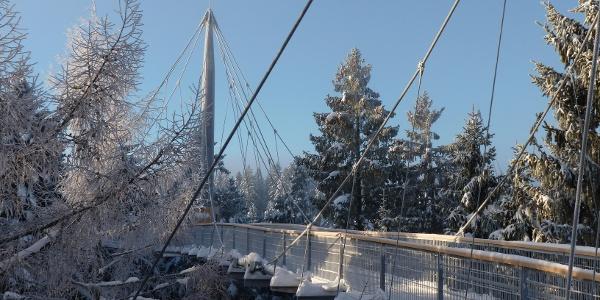 Skywalk im Winter