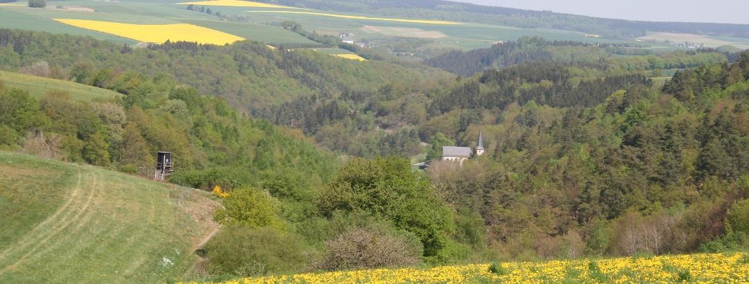 Hunsrück-Landschaft mit Walholzkirche