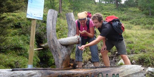 Abstieg Naturfreundesteig nahe der Gainschniggalm