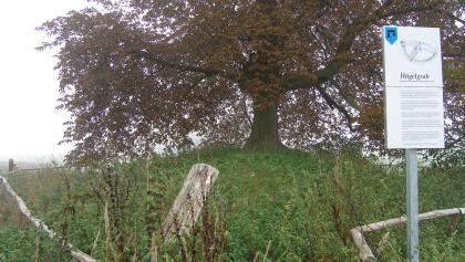 Hügelgräber sind Zeugen der Besiedlung in der Bronzezeit.
