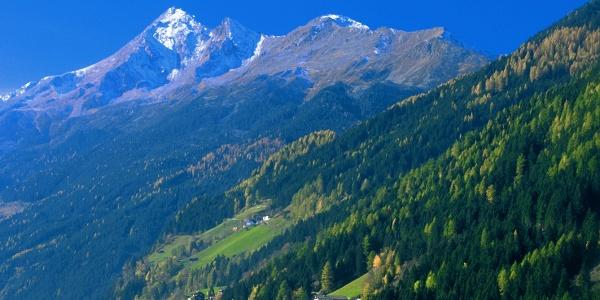 Brennerspitze