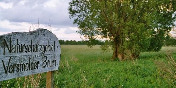 Versmolder Naturschutzgebiet
