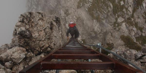 Abstieg auf einer der vielen Leitern am Hindelanger Klettersteig