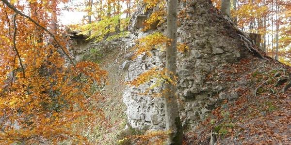 Die Ruine Rothenfels.