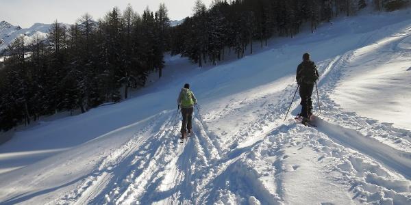 ... und halten links auf die nächste, etwas schmälere, Waldschneise zu. Die rechte Spur würde zum Leiten (2078 m) führen.
