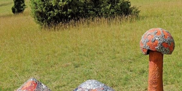 Kunstformen der Natur von Ulrike Häußler