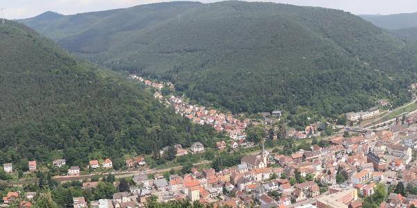 "Panorama Aussichtsturm ""Dicker Stein"""