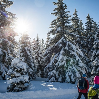Langlauf im Hochschwarzwald