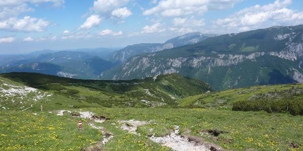 Weg vom Nasskamm zur Lurgbauerhütte (22.6.2014)
