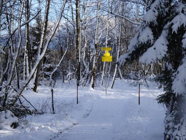 Geräumter winterwanderweg in der Kendlmühlfilze in Grassau