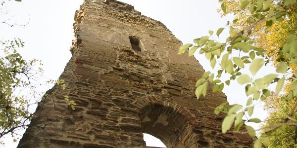 Ruine Speckfeld