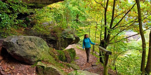 Wanderin auf Rodalber Felsenwanderweg