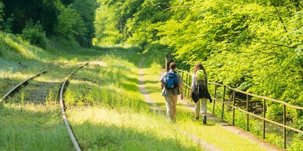 Entlang der Strecke der Brexbachtalbahn