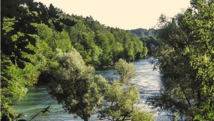 Paysage de la Reuss près de Mellingen