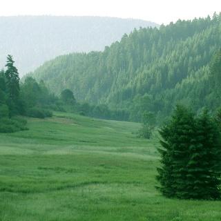 Die Glaswaldwiesen bei Alpirsbach