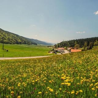 Paysage près de La Chaux-de-Fonds