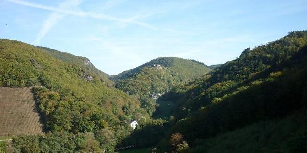 Blick ins Veldenzer Bachtal mit Schloss Veldenz