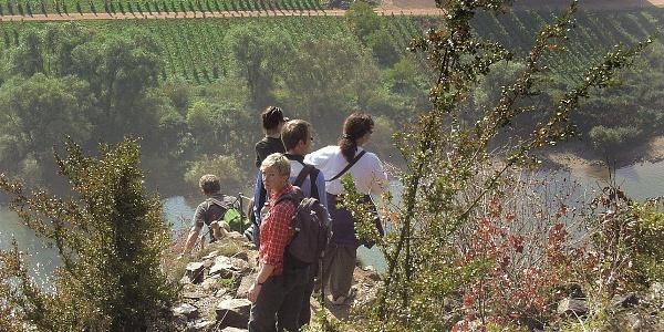 Calmont Klettersteig - am steilsten Weinberg Europas