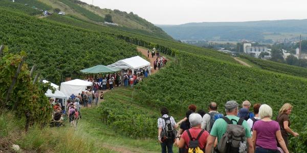 Weinwanderwegsfest  Mittlere Nahe