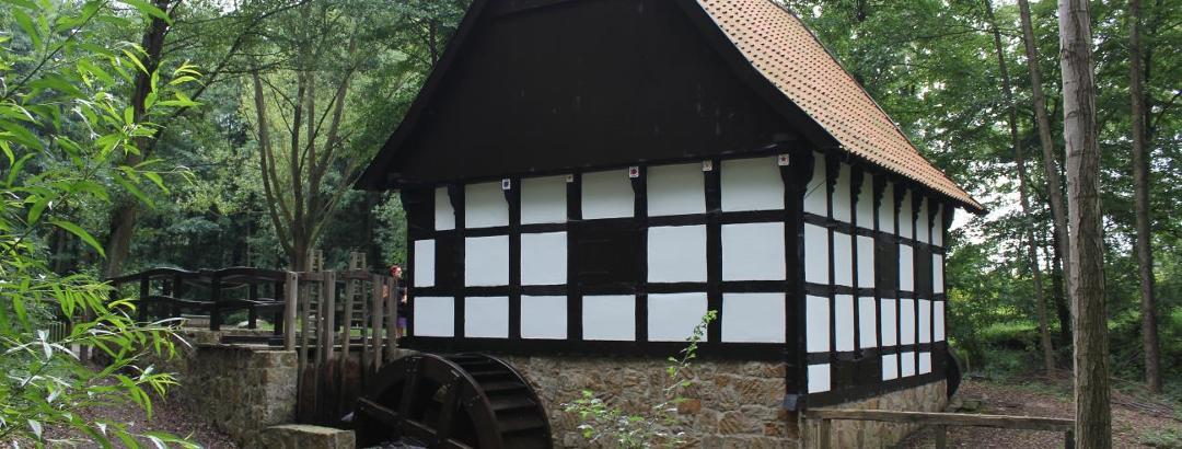 Hofwassermühle am Museumshof