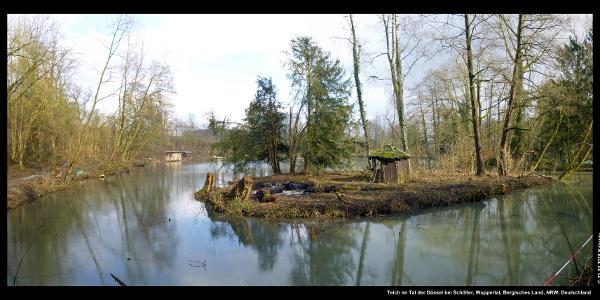 Teich im Tal der Düssel bei Schöller, Wuppertal, Bergisches Land, NRW, Deutschland