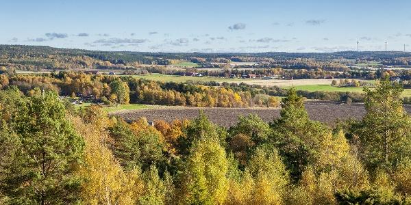 Aussicht über die schwedische Hügellandschaft