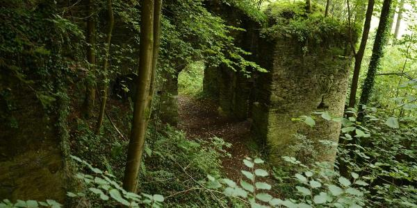 Ruine Neu Leonrod