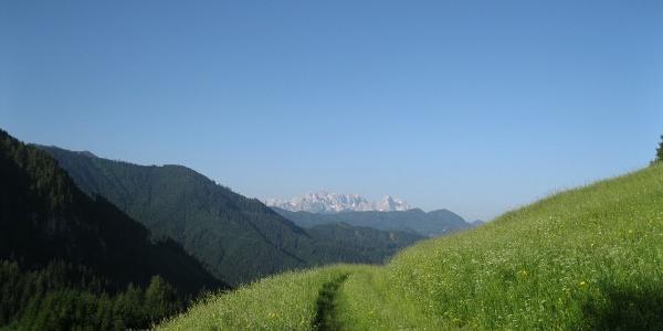 Aufbruch vom Riepl mit Blick zu den Steiner Alpen.