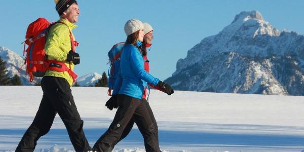 Winterwandern mit Blick auf den Säuling