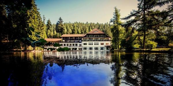 Naturpark-Wirt Langenwaldsee