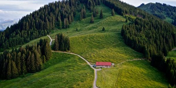 Blick auf Fahnengehern Alpe und Hörnerpanoramaweg Richtung Bolsterlang